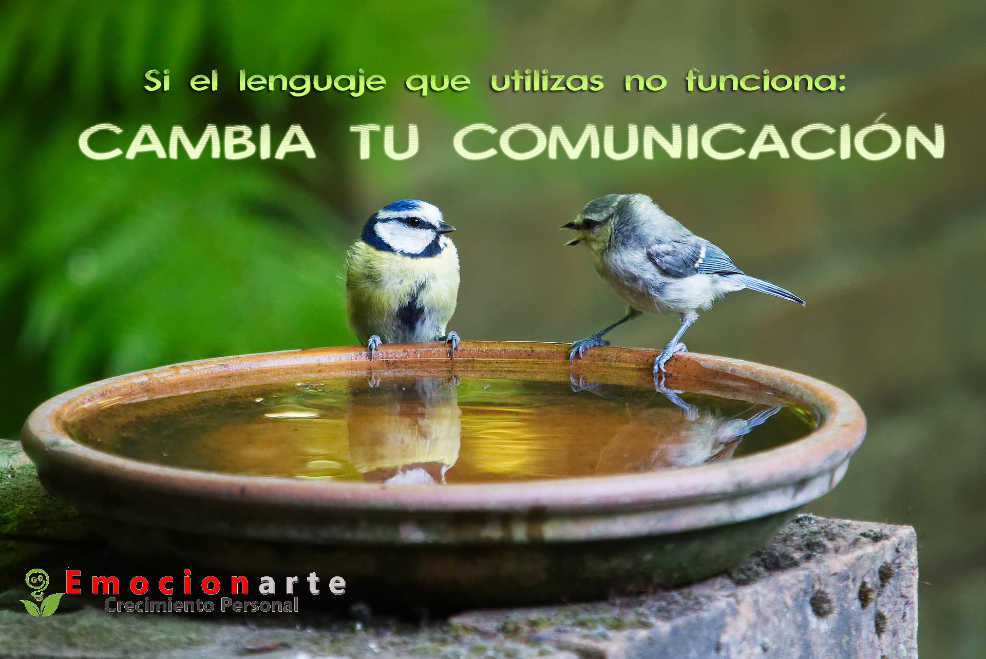 Comunicación: Asertividad y Escucha